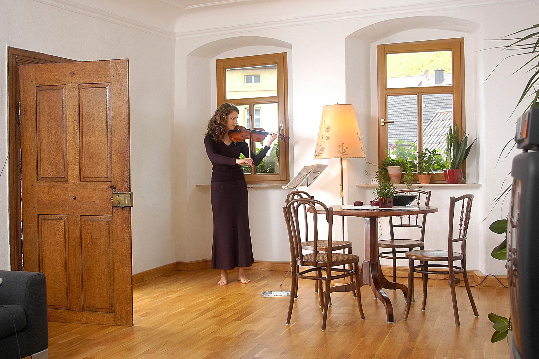 Klassische Traditionelle Holzfenster Eicher